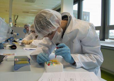 Profielwerkstukbegeleiding: Forensisch DNA-onderzoek